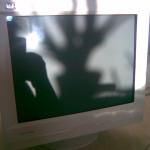 G220f CRT Monitors