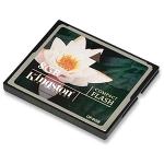 8GB Compact Flash Card